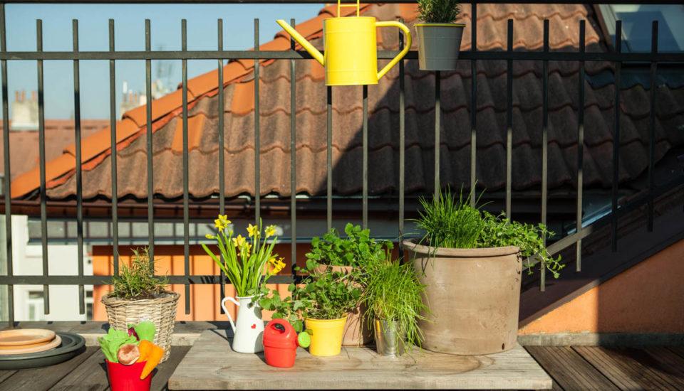 Ako si zariadiť balkón plný byliniek