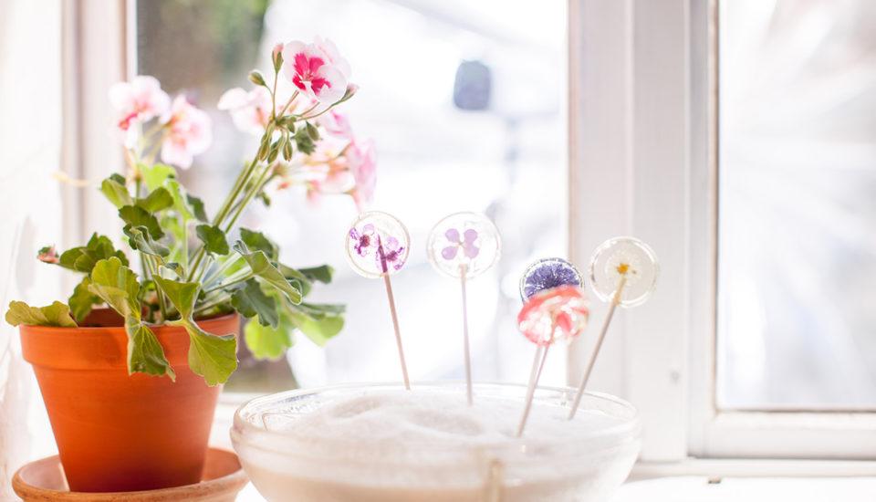 Kvetované lízanky