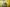 Jarný reďkovkový šalát
