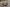 Vcelku grilované morčacie prsia vtrojobale skapustovým šalátom acesnakovým dipom