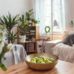 Ako dostať do domova viac zelenej (azelene)