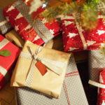 Čo vymyslieť pod stromček? Zahrajte sa na vianočného výskumníka