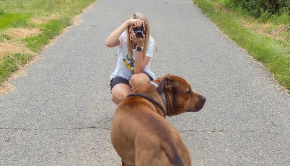 Prišiel som na to, ako odfotiť domácich miláčikov tak, aby na fotkách vždy dobre vyzerali