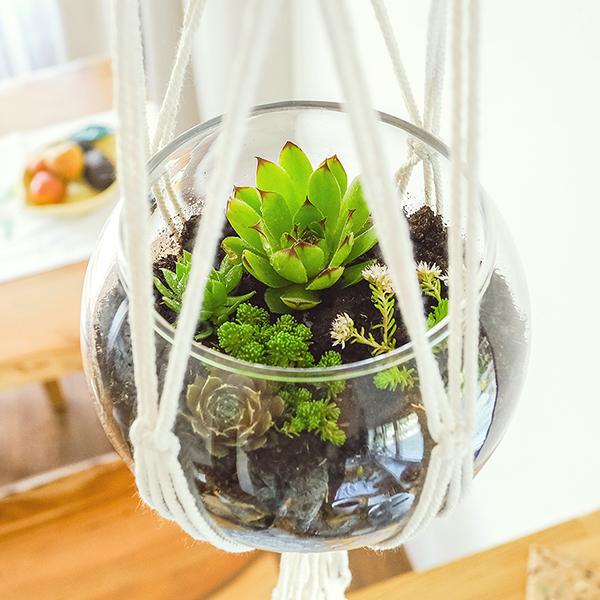 Vysaďte sklenenú nádobu