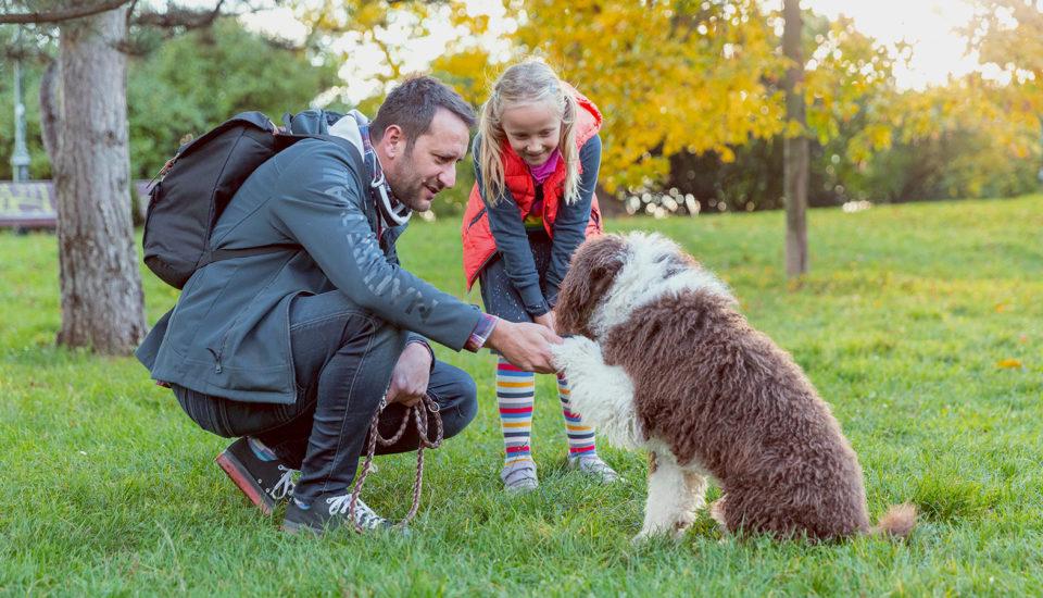 """""""Mami, ja chcem psa!"""" – ako sa popasovať stýmto detským prianím?"""
