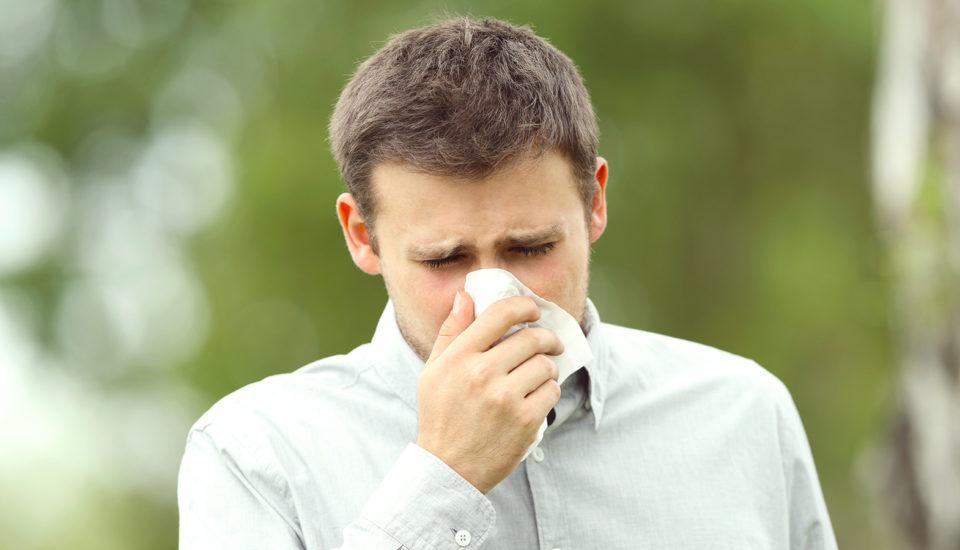 6 rád alergika, ako sa neukýchať ksmrti