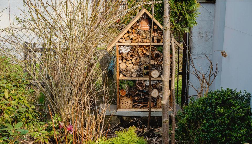Vyrobte si hmyzí hotel! Parádna zábava pre malých aj veľkých, navyše prospešná pre prírodu