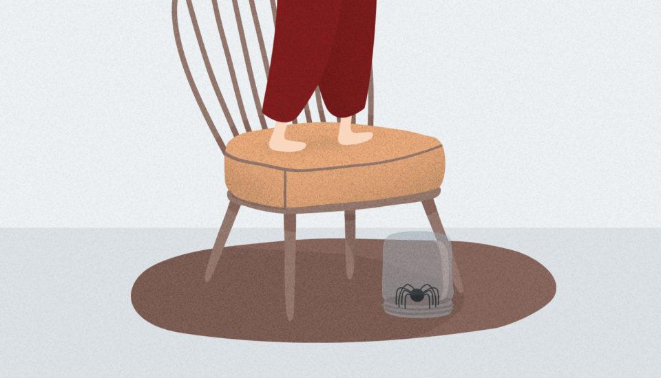 Prečo máme strach zpavúkov anie zveveričiek? Psychoterapeut radí, ako to zvládnuť