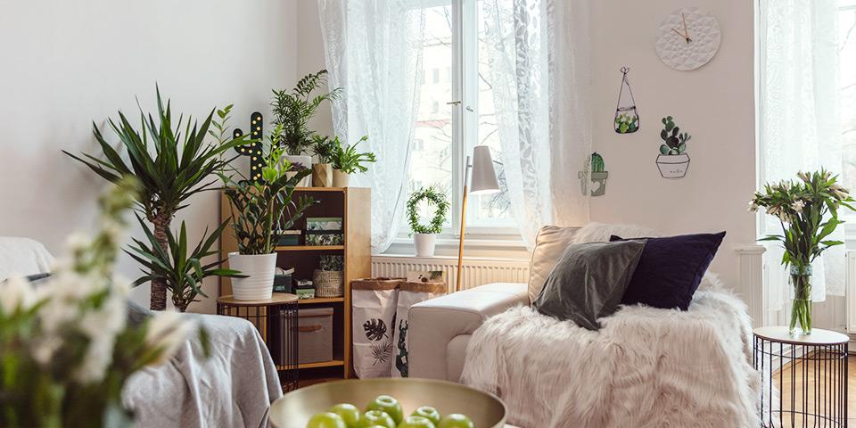 Zelený kút v byte tvorený kvetinami a zelenými dekoráciami